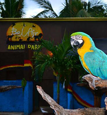 El Parque Bel Air en Cancun