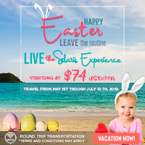 Meet your 2019 purpose and travel to the beach