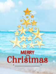 special offer for Christmas royal solaris