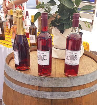 Distintos Tipos de Vinos en el Festival GastroVino en Los Cabos