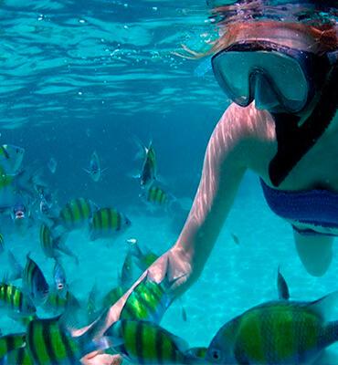 Snorkeling en la playa Maroma en Cancun