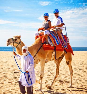 Los Tours de Camellos en las Playas de Los Cabos
