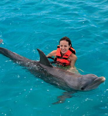 Nadando con Delfines en Cancun